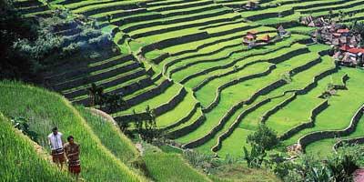 Banawe, Banaue, banawe rice terraces, Philippines summer destination, summer getaway