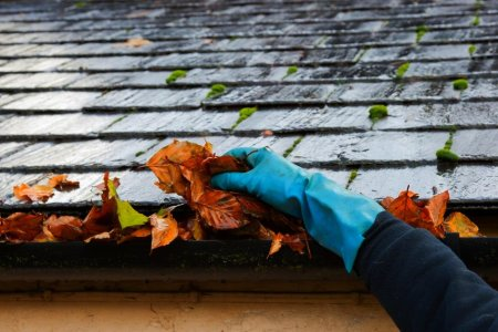 gutter-cleaning-10237